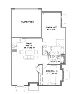 Finished Basement . 3br New Home in Windsor, CO